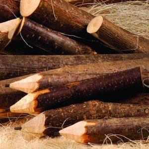 6 lápices madera hecho a mano 11 x 2 CM