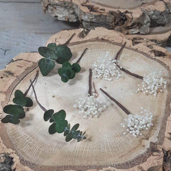 Paniculata y Eucaliptus para el Pelo