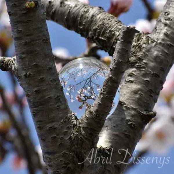 Porta anillos de troncos de cerezos naturales