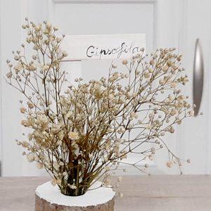 Bots con Paniculata