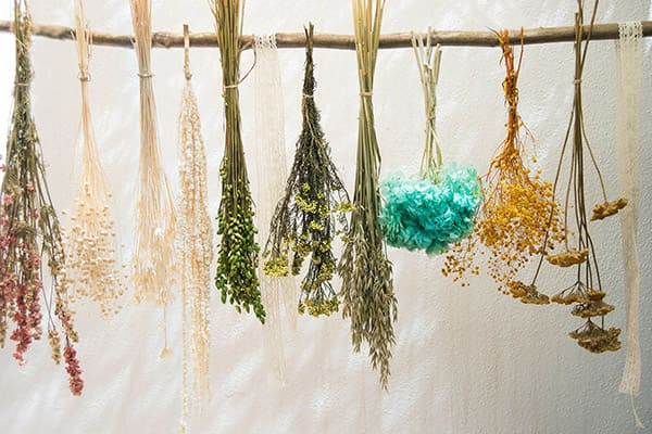 Secadero de flores secas