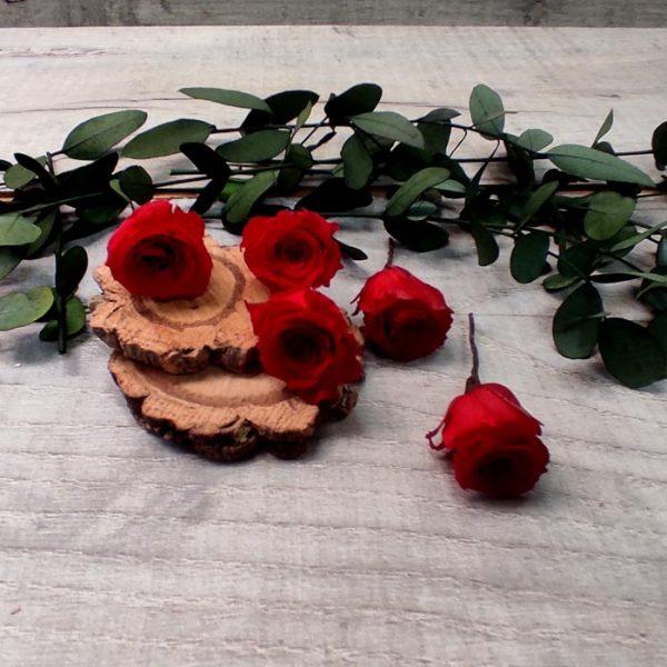 Pin de Rosas Rojas para el Pelo